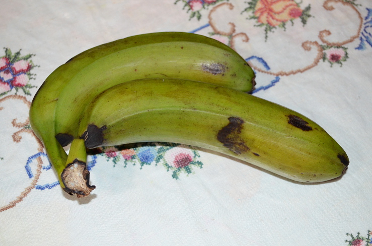 plantains1