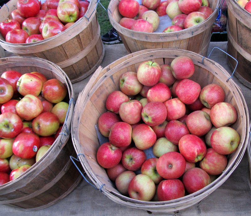 Coburg Farmers Market apples